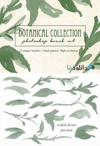 CM---Botanical-Brush-Collec