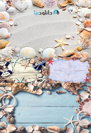 Seashells-Frames-Set-Stock