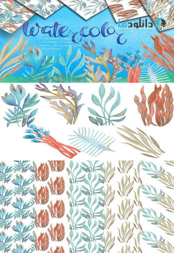 Watercolor-sea-plants-and-patterns